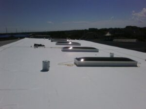 Flat roof with skylights from 2010