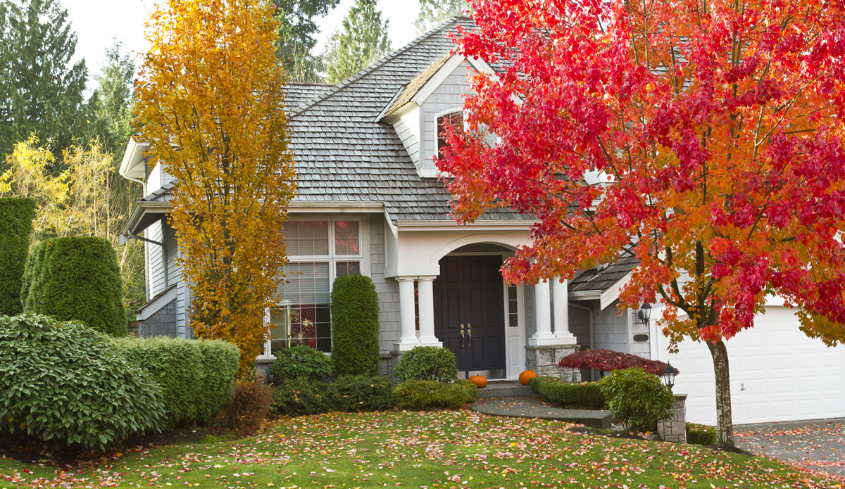 Reasons to Fix Your Roof This Fall